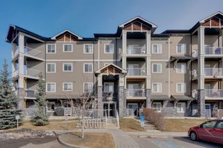 Photo 21: 1111 115 Preswick Villas in Calgary: McKenzie Towne Apartment for sale : MLS®# A1081474