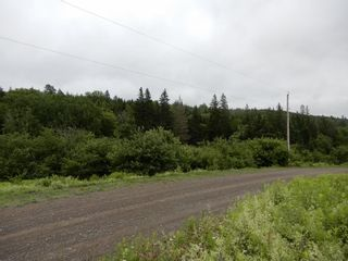 Photo 11: 299 New Lairg Road in New Lairg: 108-Rural Pictou County Vacant Land for sale (Northern Region)  : MLS®# 202117815