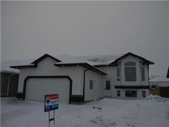 Main Photo: 419 Faldo Crescent: Warman Single Family Dwelling for sale (Saskatoon NW)  : MLS®# 385015