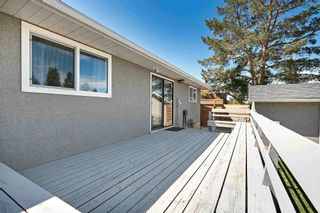 Photo 41: 7 Belleville Avenue: Spruce Grove House for sale : MLS®# E4249541