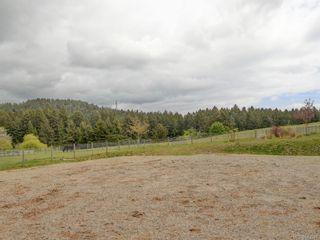 Photo 15: 5797 Oldfield Rd in Saanich: SW Elk Lake House for sale (Saanich West)  : MLS®# 843591