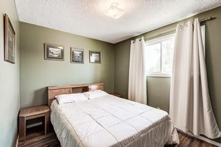Photo 25: 459 Queen Charlotte Road SE in Calgary: Queensland Detached for sale : MLS®# A1122590