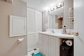 Photo 23: 710 53 Avenue SW in Calgary: Windsor Park Semi Detached for sale : MLS®# A1067398