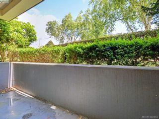Photo 15: 102 331 E Burnside Rd in VICTORIA: Vi Burnside Condo for sale (Victoria)  : MLS®# 788764