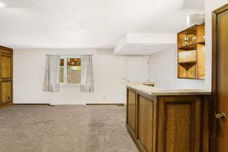 Photo 19: 4 Castlebury Way NE in Calgary: Castleridge Detached for sale : MLS®# A1146595