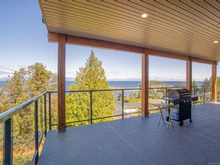 Photo 58: 3868 Gulfview Dr in : Na North Nanaimo House for sale (Nanaimo)  : MLS®# 871769