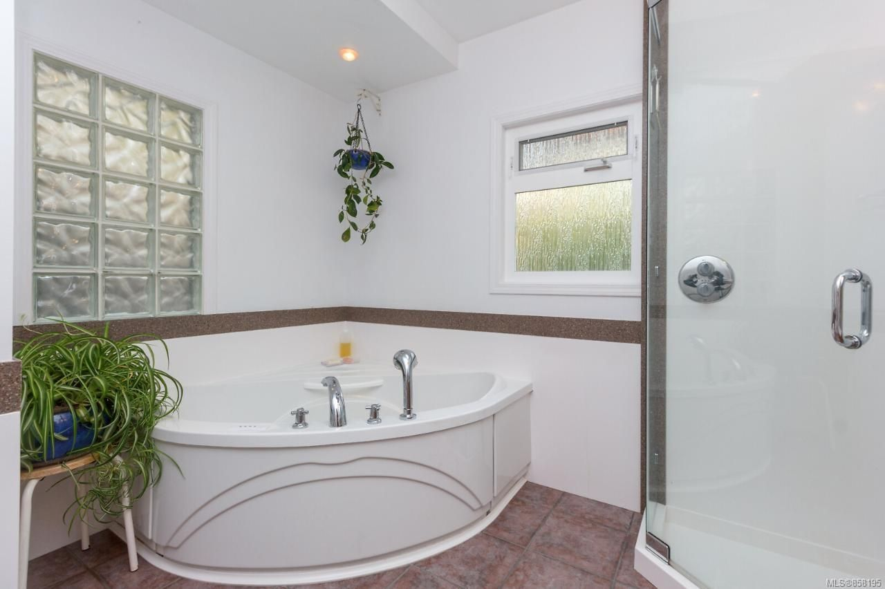 Photo 23: Photos: 1542 Westall Ave in : Vi Oaklands House for sale (Victoria)  : MLS®# 858195