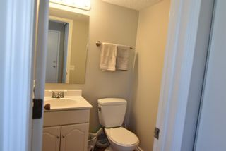 Photo 21: 199 Templeby Drive NE in Calgary: Temple Detached for sale : MLS®# A1140343
