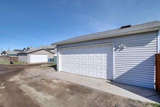 Photo 33: 149 Elgin Place SE in Calgary: McKenzie Towne Detached for sale : MLS®# A1106514