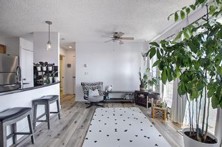 Photo 13: 6 210 Village Terrace SW in Calgary: Patterson Apartment for sale : MLS®# A1080449