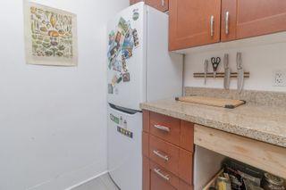 Photo 20: 1246 Montrose Ave in Victoria: Vi Hillside Multi Family for sale : MLS®# 879751