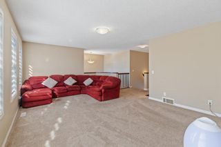 Photo 20: 101 COPPERSTONE Close SE in Calgary: Copperfield Detached for sale : MLS®# A1076956