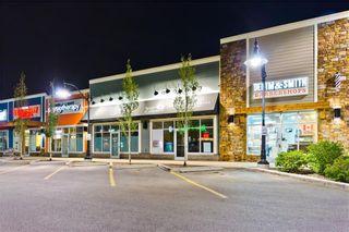 Photo 33: 333 SILVERADO CM SW in Calgary: Silverado House for sale : MLS®# C4199284