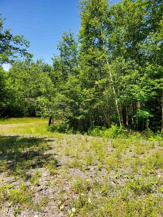 Photo 2: 8 Shady Lane in Loch Broom: 108-Rural Pictou County Vacant Land for sale (Northern Region)  : MLS®# 202117520