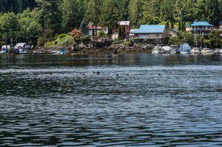 Photo 39: 6781 BATHGATE Road in Egmont: Pender Harbour Egmont House for sale (Sunshine Coast)  : MLS®# R2593981