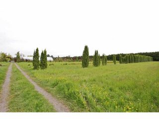 """Photo 13: 7200 216TH Street in Langley: Willoughby Heights Land for sale in """"Milner"""" : MLS®# F1411651"""