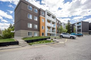 Photo 22: 202 4455C Greenview Drive NE in Calgary: Greenview Apartment for sale : MLS®# A1110677