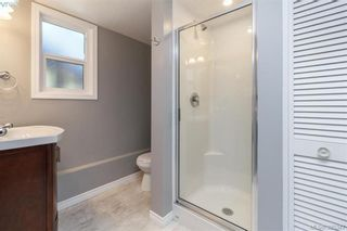 Photo 10: 4188 Bracken Ave in VICTORIA: SE Lake Hill House for sale (Saanich East)  : MLS®# 792670