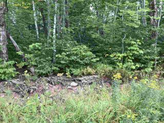 Photo 2: Lot Westchester Road in Westchester Valley: 102N-North Of Hwy 104 Vacant Land for sale (Northern Region)  : MLS®# 202017457