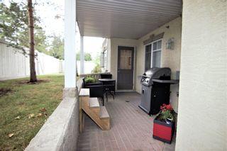 Photo 18: 119 12111 51 Avenue in Edmonton: Zone 15 Condo for sale : MLS®# E4253600