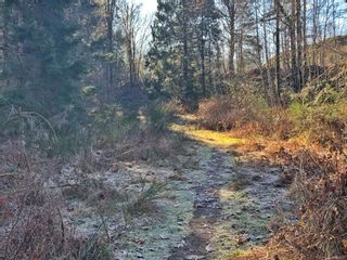 Photo 4: 0 Riverbend Rd in : Na Extension Land for sale (Nanaimo)  : MLS®# 868870