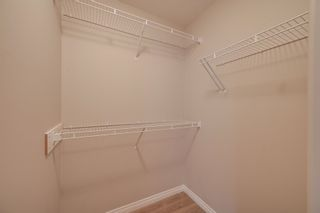 Photo 20: 11307/11309 79 Avenue in Edmonton: Zone 15 House Duplex for sale : MLS®# E4245699