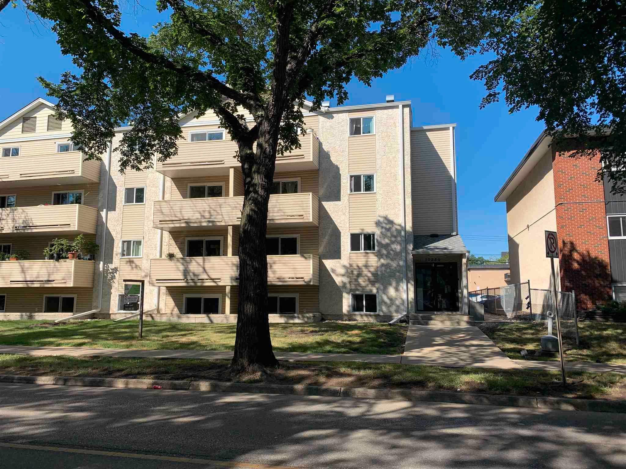 Main Photo: 207 10250 116 Street in Edmonton: Zone 12 Condo for sale : MLS®# E4258070