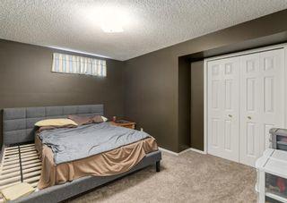 Photo 42: 37 Douglasbank Rise SE in Calgary: Douglasdale/Glen Detached for sale : MLS®# A1079543