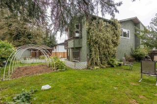 Photo 34: 32094 HOLIDAY Avenue in Mission: Mission BC House for sale : MLS®# R2507161