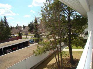 Photo 28: 304 14825 51 Avenue in Edmonton: Zone 14 Condo for sale : MLS®# E4244015