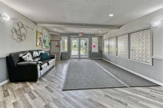 Photo 24: 337 1717 60 Street SE in Calgary: Red Carpet Apartment for sale : MLS®# A1067174