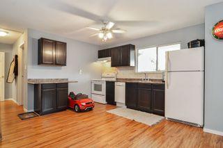 Photo 20: 20091 WANSTEAD Street in Maple Ridge: Southwest Maple Ridge House for sale : MLS®# R2545243