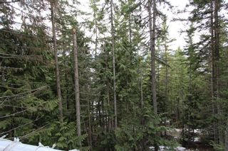 Photo 14: 2393 Vickers Trail in Anglemont: North Shuswap House for sale (Shuswap)  : MLS®# 10078378