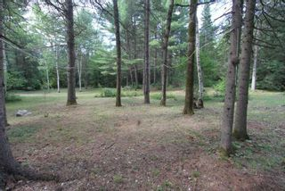 Photo 13: 300 Pinery Road in Kawartha Lakes: Rural Somerville Property for sale : MLS®# X4840235