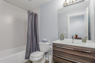 Photo 24: 163 EVANSBOROUGH Crescent NW in Calgary: Evanston Detached for sale : MLS®# A1012239