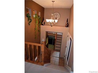 Photo 11: 78 Satinwood Place in Winnipeg: St Vital Residential for sale (South East Winnipeg)  : MLS®# 1605581