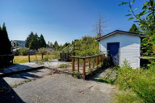Photo 22: 22621 BROWN Avenue in Maple Ridge: East Central House for sale : MLS®# R2601756