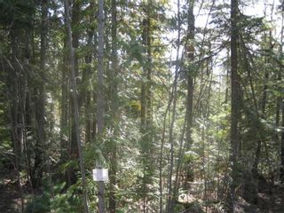 Photo 3: Lot 84 Anglemont  Way in Anglemont: Land Only for sale : MLS®# 10001830