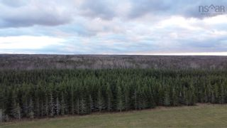 Photo 11: Lot Nollett Beckwith Road in Ogilvie: 404-Kings County Vacant Land for sale (Annapolis Valley)  : MLS®# 202120227