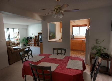 Photo 2: Photos: 203-924 Cook St in Victoria: Residential for sale (Fairfield)  : MLS®# 257887