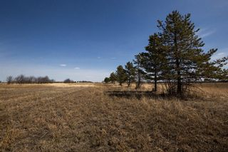 Photo 5: 138 ave 100 Street SE in Calgary: Shepard Industrial Residential Land for sale : MLS®# A1099755
