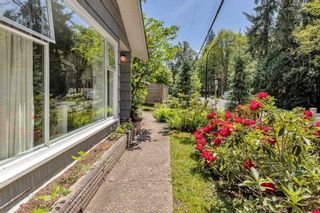 Photo 36: 24003 FERN Crescent in Maple Ridge: Silver Valley House for sale : MLS®# R2580820