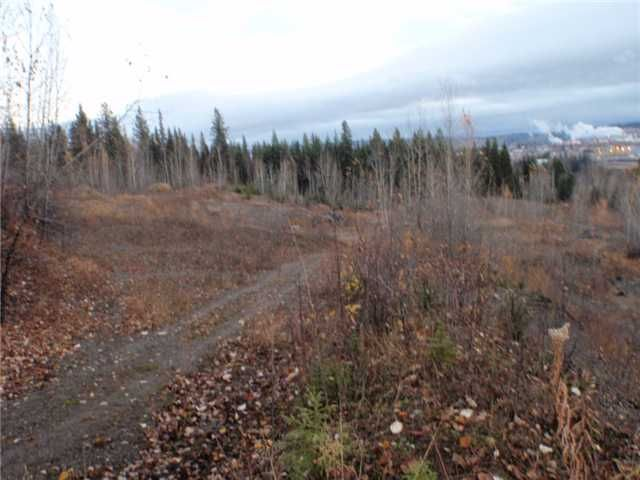 Photo 5: Photos: 1437 N FRASER Drive in QUESNEL: Quesnel - Town Commercial for sale (Quesnel (Zone 28))  : MLS®# N4505131