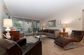 Photo 3: 302 518 Moberly Road in Vancouver: False Creek Condo for sale (Vancouver West)  : MLS®# V991007