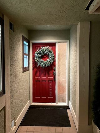 Photo 40: 5353 WILDWOOD Crescent in Delta: Cliff Drive House for sale (Tsawwassen)  : MLS®# R2541314