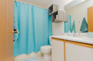 Photo 33: 8 Alpaugh Crescent: Leduc House for sale : MLS®# E4254012