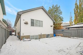 Photo 33: 180 Mt Aberdeen Close SE in Calgary: McKenzie Lake Detached for sale : MLS®# A1046116