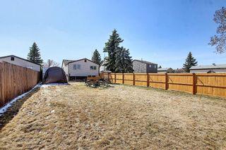 Photo 36: 136 Abingdon Way NE in Calgary: Abbeydale Detached for sale : MLS®# A1097346