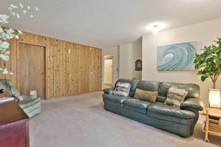 Photo 17: 53219 RGE RD 11: Rural Parkland County House for sale : MLS®# E4256746