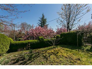 """Photo 4: 3105 ST. CATHERINES Street in Vancouver: Mount Pleasant VE House for sale in """"MOUNT PLEASANT"""" (Vancouver East)  : MLS®# V1116522"""